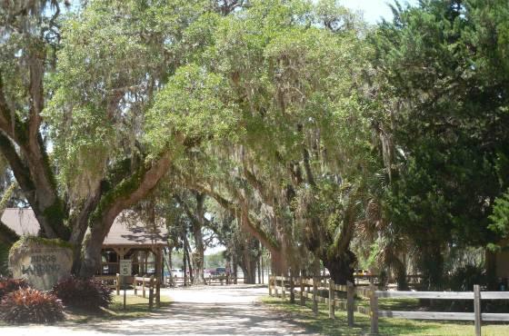 Bings Landing Park