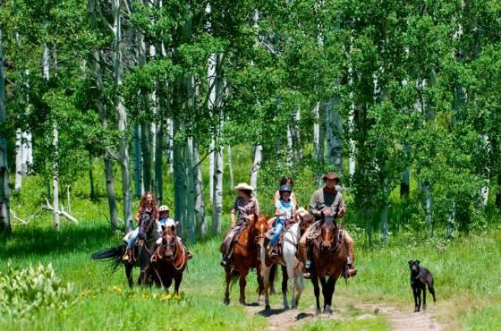 Vista Verde Horseback Riding