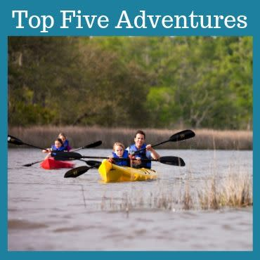 Top 5 Outdoor Adventures in Coastal Mississippi