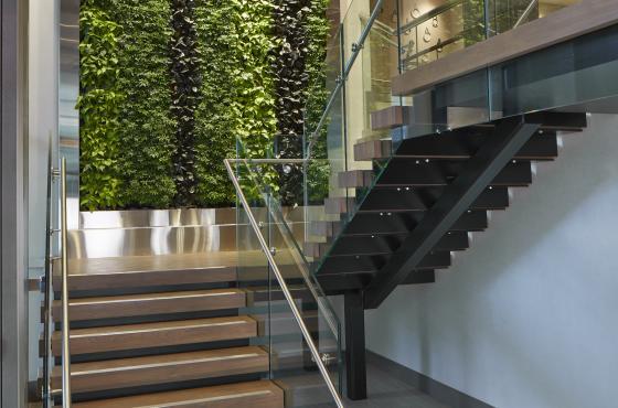 Entrance/Living Wall