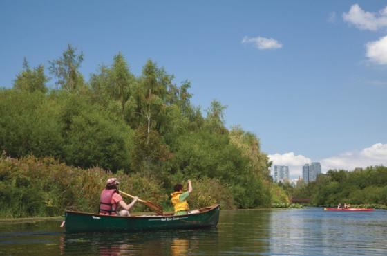 Mercer Slough Canoes