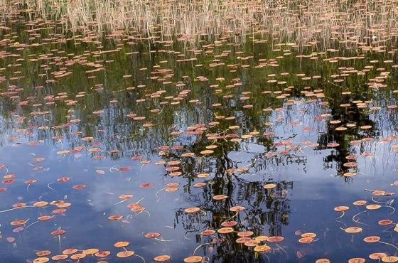 Phantom Lake Loop - Photo Credit Alex Levine