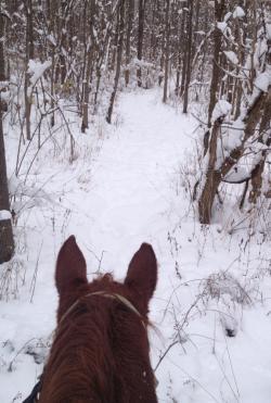 Winter horseback ride at Natural Valley Ranch