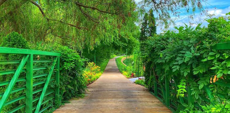Arboretum-Botanical-Gardens