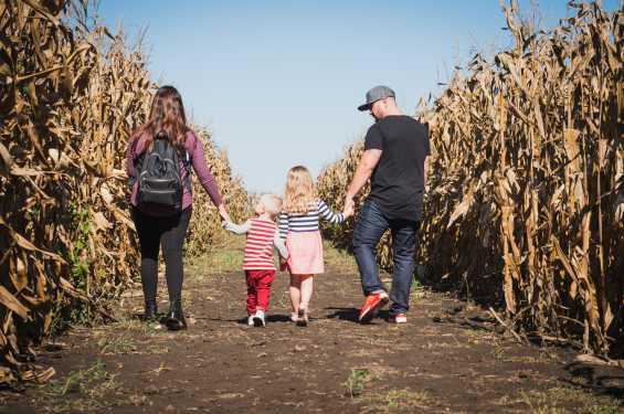 family in the corn maze