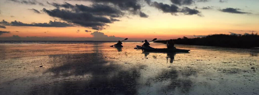 Sunset Paddle on Cane Bayou with Bayou Adventure