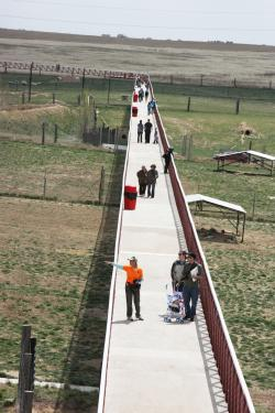 The 1.5-mile-long footbridge at The Wild Animal Sanctuary.