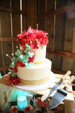 Kayla and Evan Aldridge wedding cake