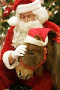 Christmas with Santa and Ponies