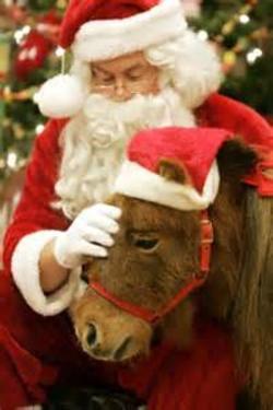 Santa and Ponies