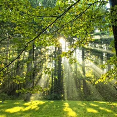 Forest Preserves of Winnebago County