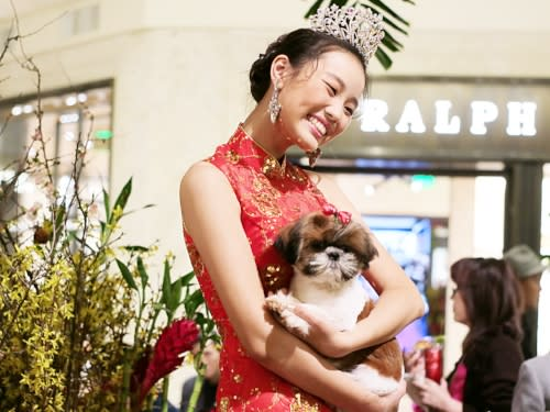 South Coast Plaza Year of the Dog Model