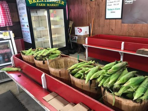 Boxes Of Corn At Brentlinger's Farmers Market In Dayton, Ohio