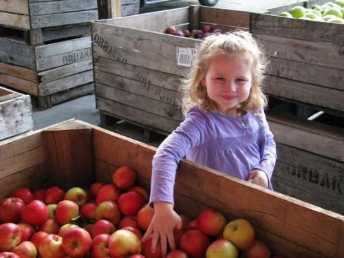 Girl with Apples - Wayne County