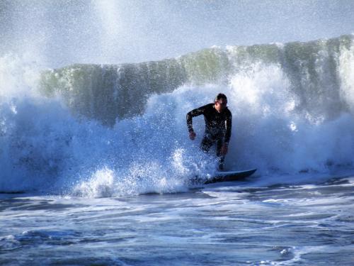 Surfer - Cindy Shanks