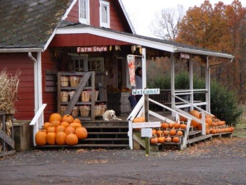 A porch in the front of a red barn that is all decked out for fall with pumpkins