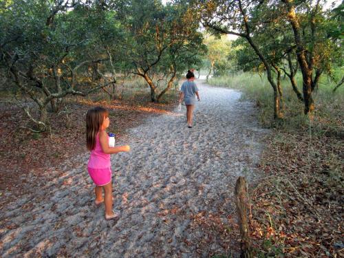 Sugar Loaf Trail Carolina Beach State Park