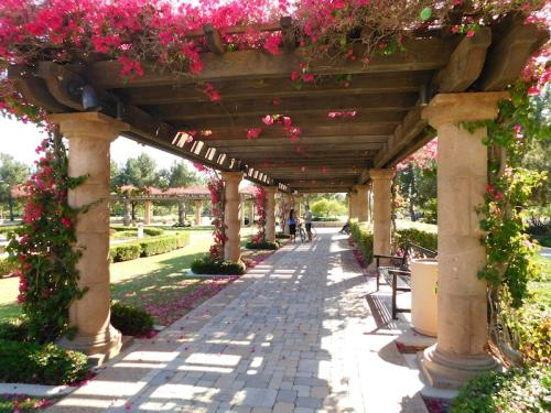 Walking under a bougainvillea-covered pergola at Bill Barber Community Park