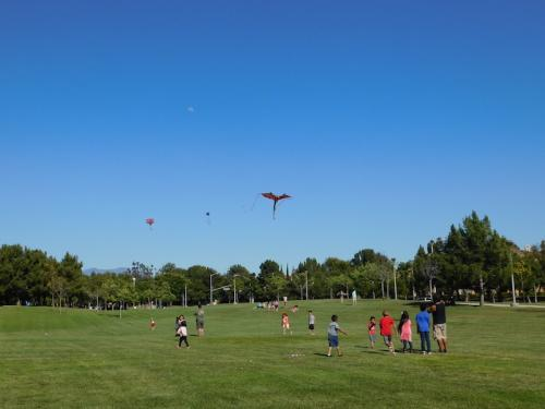 Flying kites at Bill Barber Community Park