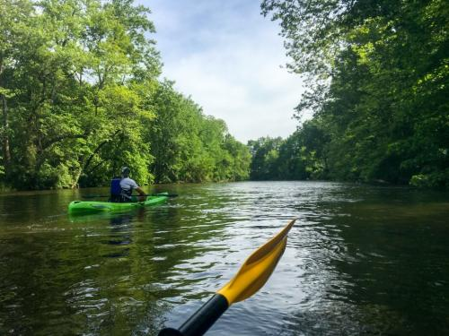 A trip down the Elkhart River offers a mix of rural, secluded views and diverse wildlife with scenes from urban life. (Photo by Marshall V. King)