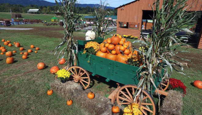 Layman Family Farms Fall Festival - Virginia's Blue Ridge