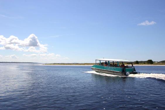 Shell Island Shuttle Service