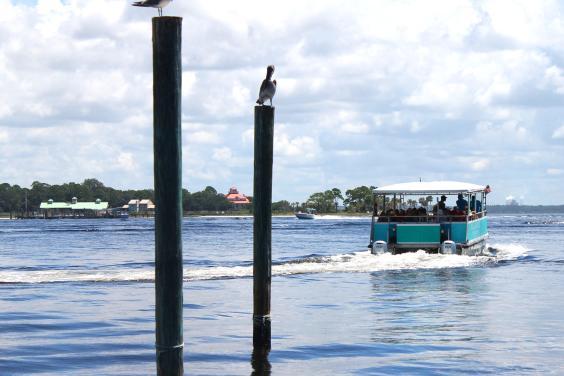 Shell Island Shuttle Service to Shell Island