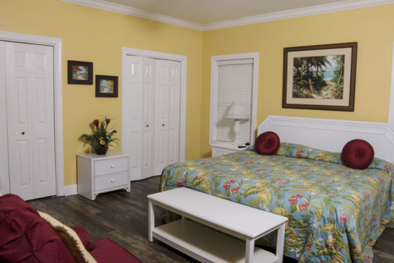 First floor bedroom is large and cozy!