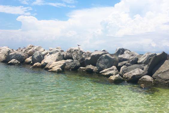 Shell Island Jetties