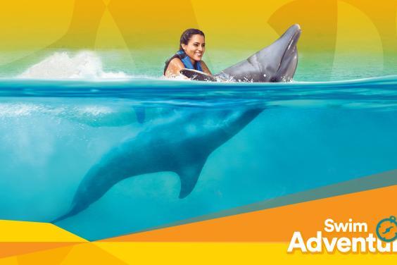 Swim Adventure