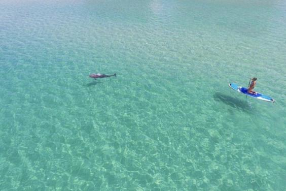 Paddle into the crystal blue waters!