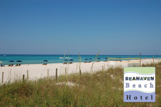 The Beach behind Seahaven Beach Hotel