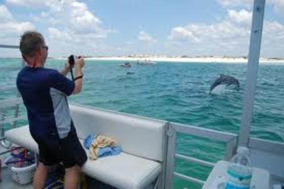 This is from our Dolphin Tour Boat.