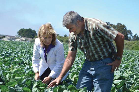 Giusti Farms