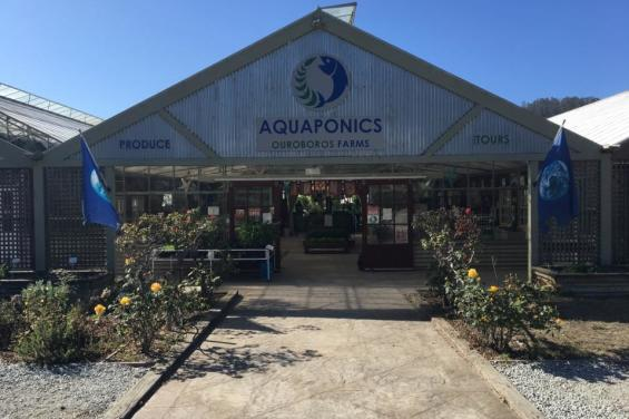 Aquaponics_Farms_HalfMoonBay