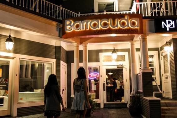 Barracuda 1