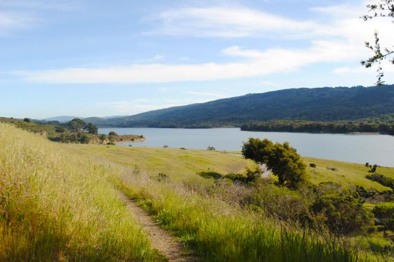 Crystal Springs Regional Trail