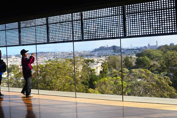 De Young Museum by Edna Takeda Geller (11)