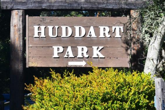 Huddart_Park_by_Edna_Takeda_Geller_(1).jpg