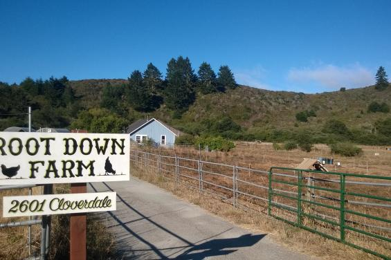 Root_Down_Farm_Entrance_Sign