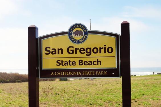 San_Gregorio_State_Beach_by_Amelie_Gissinger.jpg