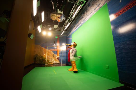 Seymour in green screen photo room