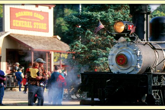 Roaring Camp Railroads 2