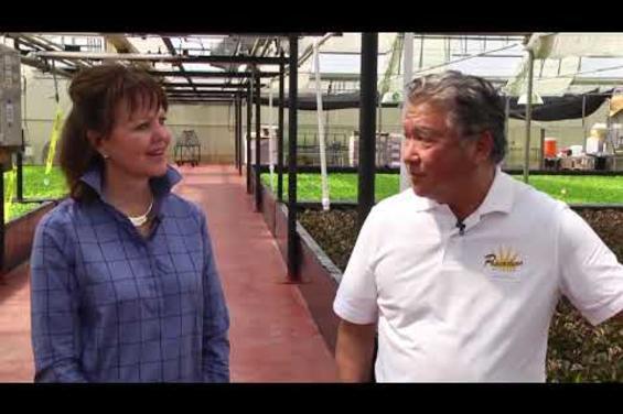 Oku Farms Video