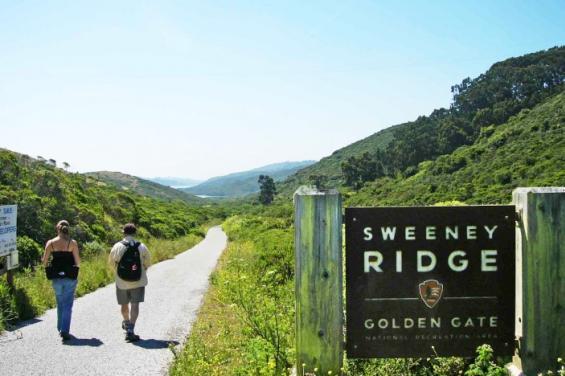sweeney_ridge_by_Edna_Takeda_Geller.jpg