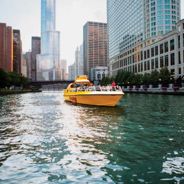 Seadog Cruises