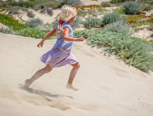 Dune Play