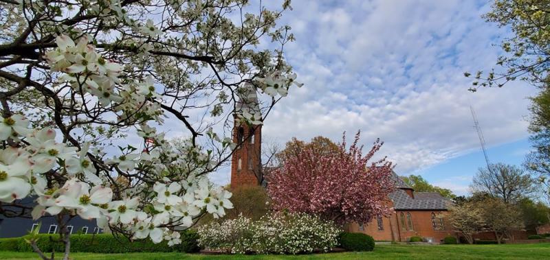 Grace Episcopal Church - Diane Kipplen