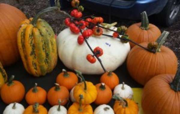 Fall Fest at the Fitchburg Farmer's Market