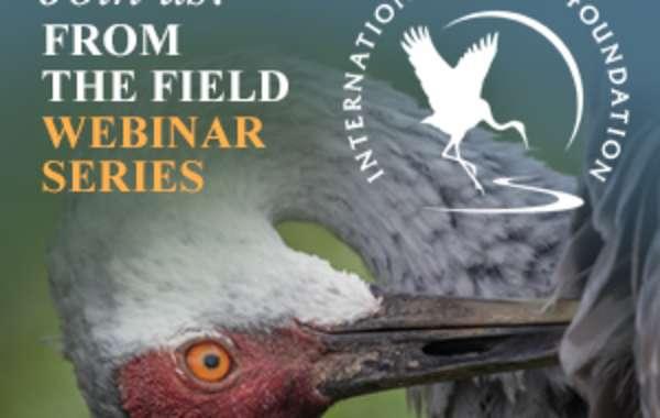 From the Field Webinar: International Crane Foundation